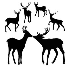 deer silhouette, vector, illustration