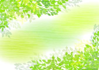 新緑ナチュラル背景