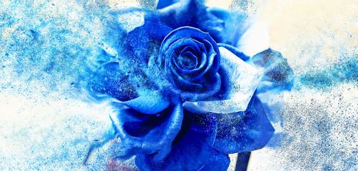 Scattering blue rose