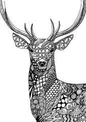 Deer, zentangle drawing