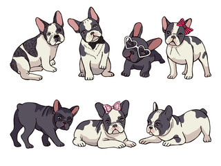 Illustrations set of cute little French bulldog. Funny pictures of puppy