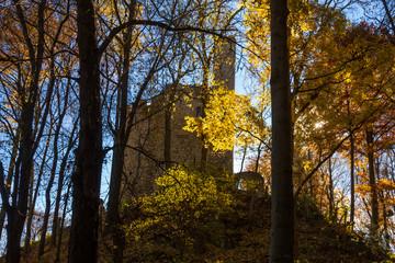 Die Ehrenburg bei Plaue im Herbst