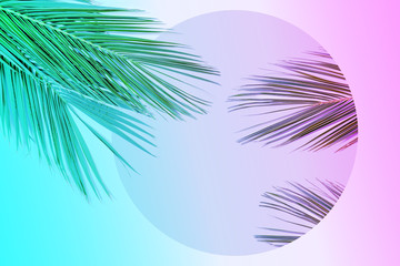 Tropical palm leaves in vibrant gradient neon colors.