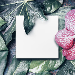 Wall Mural - Tropical leaves and flowers layout with white blank  paper sheet background for your design