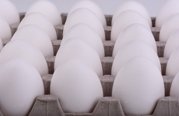 Rows of eggs in a cardboard box