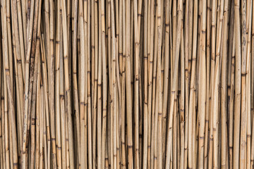 Old dry straw background, bamboo wall texture. Eco natural background concept