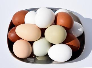 Huehnereier, Eier, ungefaerbt