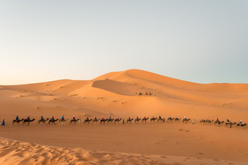 Tourists at sunset on the sand dunes