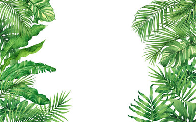 Watercolor painting frame tropical leaves coconut,palm,green leaf isolated on white background.Watercolor hand drawn illustration tropical exotic leaf for wallpaper,backdrop,card,vintage Hawaii style. Wall mural