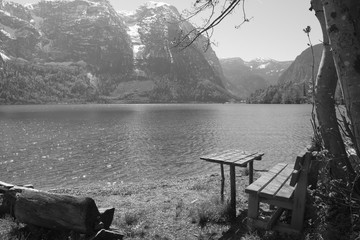 Black and white Love seat at lake in summer