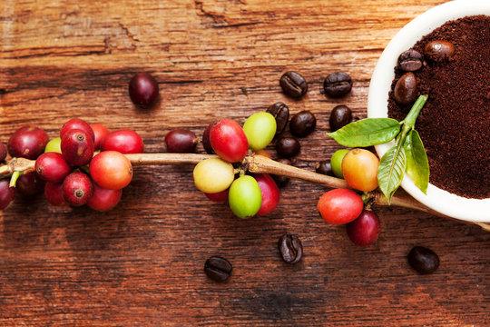 Fair trade coffee background.
