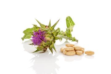 Milk Thistle natural medicine.