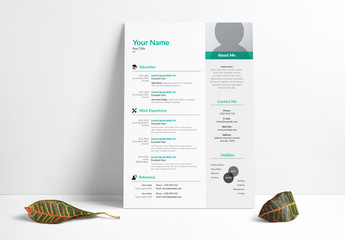 Resume Layout Set with Gray Sidebar and Teal Accents