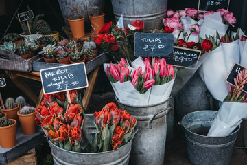 Selection of fresh flowers and potted plants on sale on a street market stall.