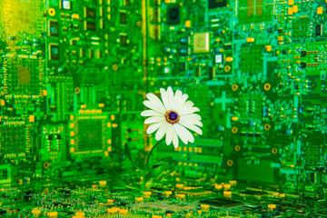 Fleur Technologique