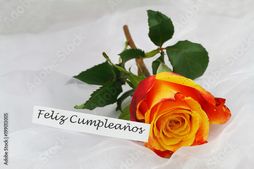 Feliz Cumpleanos Happy Birthday In Spanish Card With Orange Rose Glitter