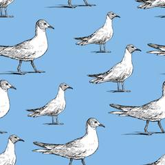 Pattern of the walking seagulls