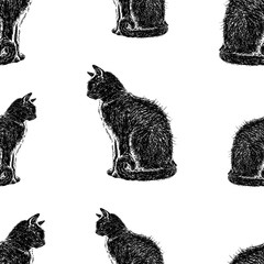 pattern of the black sitting cats