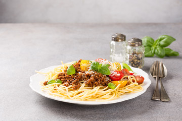 Rustic plate of tasty spaghetti Bolognaise topped with minced beef, grated parmesan cheese, cherry tomatoes and fresh basil. Copy space.