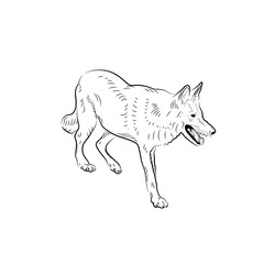 Sketch of wolf.