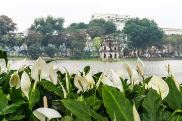 Hoan Kiem lake with a Turtle tower in the middle of the lake in Hanoi, Vietnam Wall mural