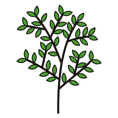 tree branch with leafs vector illustration design