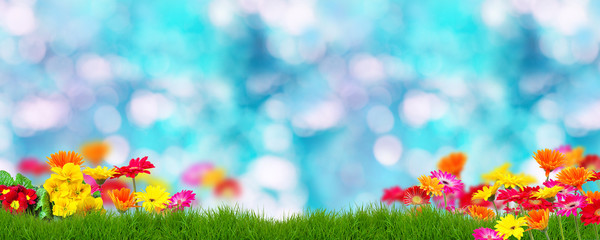 Banner Blumen