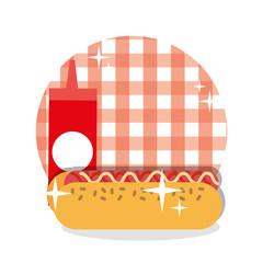 picnic hotdog ketchup sauce checkered tablecloth design vector illustration