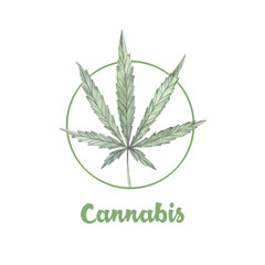 Hand drawn watercolor illustrations - Medical cannabis. Marijuana sketch. Perfect for invitations, greeting cards, posters, prints