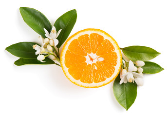 Orange fruit and flowers.