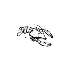 Lobster hand drawn outline doodle icon. Vector sketch illustration of healthy seafood - lobster or cancer for print, web, mobile and infographics isolated on white background.