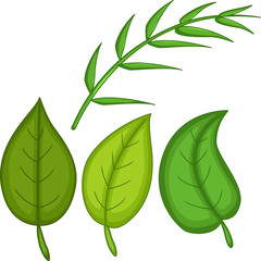 green tropical leaves cartoon