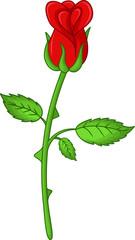 funny flower rose cartoon