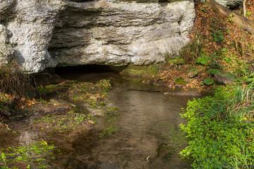 Plaue Thüringer Wald Spring Quelle