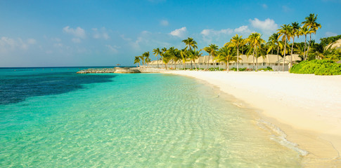 Beautiful sandy exotic beach with high coconut palms