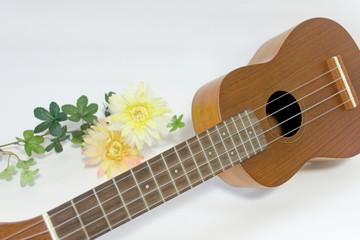 ウクレレと花