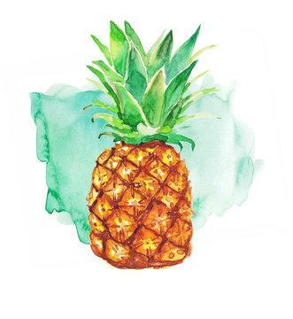 Pineapple and colorful splash on a white background. Watercolor