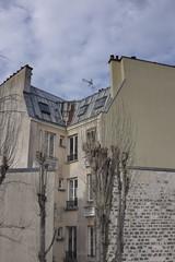Viel immeuble avec toit de zinc