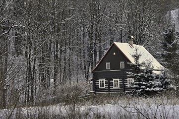 Country log house in the winter