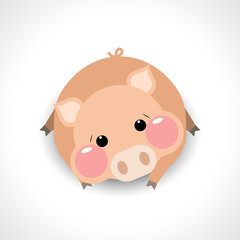 Cute pig cartoon, vector illustration