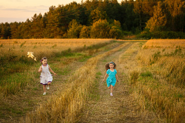 Happy girls in wheat field on warm and sunny summer evening.
