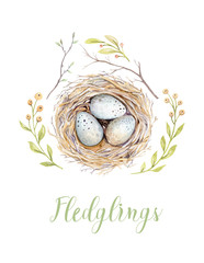 Hand drawing happy easter watercolor bird net with eggs, leaves, branches and feathers. Watercolour...