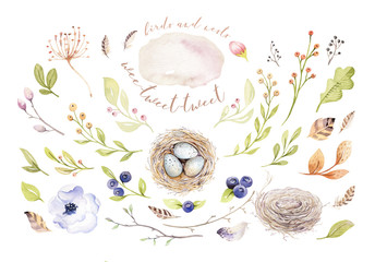 Hand drawing easter watercolor flying cartoon bird and eggs with leaves, branches and feathers. Watercolour spring art illustration in vintage boho style. Greeting bohemian card