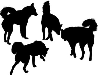 four black silhouettes of dogs