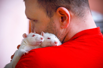 Two home of the albino rat sitting on the shoulder of a man.