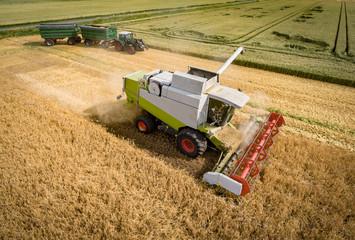 Getreideernte - Mähdrescher und Traktor mit zwei Anhängern, Luftbild