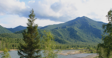 Panoramic view of the Altai Mountains spruce in the foreground, top view of the river with a shallow and spur, beautiful sky with clouds, summer, sunny day with a shadow from the clouds on the hills