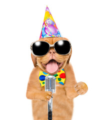 Dog in party hat ad sunglasses holding retro microphone. Isolated on white background