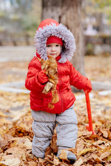 little kid collects fallen leaves in the park