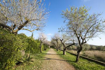 Natural Park of Garraf